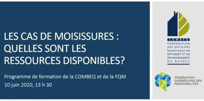 webinaire_moisissures_2020-06-10.JPG
